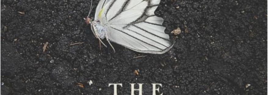 The butterfly garden dot hutchison sam reads books - The butterfly garden dot hutchison ...